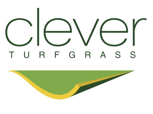 Рулонний газон Clever turfgrass